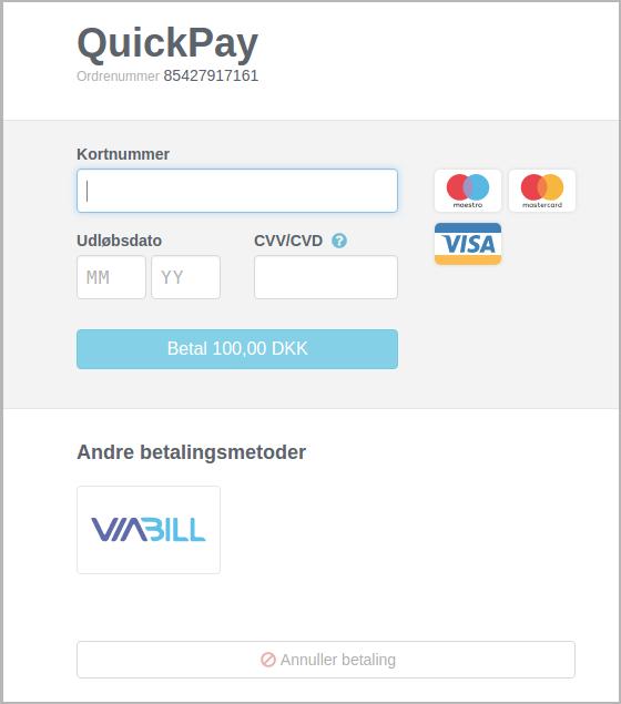 viabill-payment-window-da